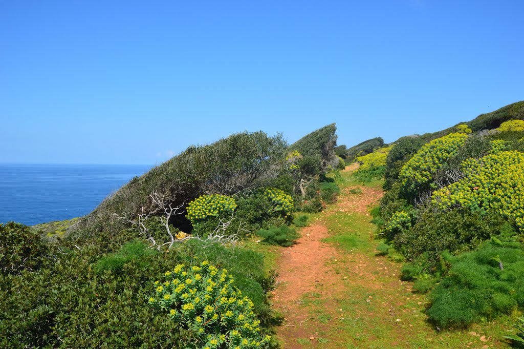 Sentiero per Cala Tramontana